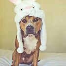 Easter Bully by ruthlessphotos