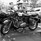 Royal Enfield by Martin Creely