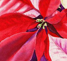 Christmas Red Poinsettia  by Irina Sztukowski
