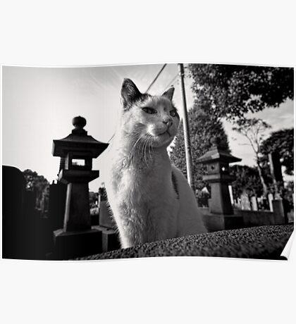 Yanaka Cemetery Cat - Japan Poster