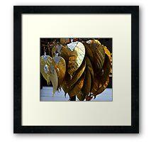 gold leaves Framed Print