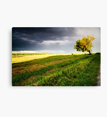Coming Storm Canvas Print