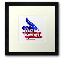 USA - Thumbs Up Framed Print