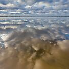 On Reflection by Bill  Robinson