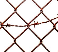 Chain Link & Barbed Wire by Buckwhite