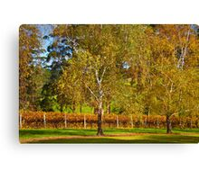 Autumn Vineyard 2012 Canvas Print