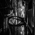 Venice B&W by Lachlan Downing