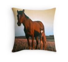 Arabian mare and foal Throw Pillow