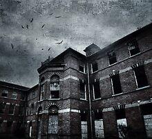 Asylum by Nicola Smith