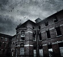 Asylum by Nikki Smith