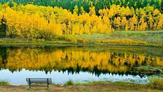 Come Sit A Spell by John  De Bord Photography