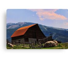 The Steamboat barn Canvas Print