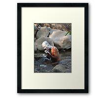 River Sanitation - Higiene En El Rio Framed Print
