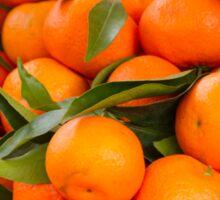 orange in winter Sticker