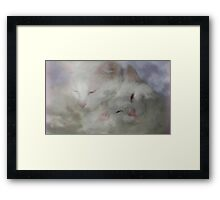 Cats In The Clouds Framed Print