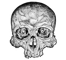 Ink Skull Photographic Print