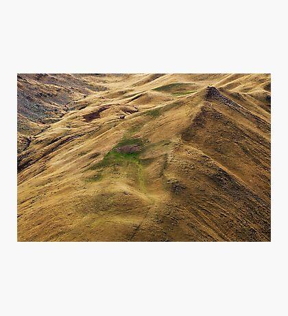 Alpine meadows in autumn Photographic Print