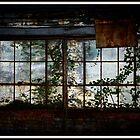 The Ivy Window  by Brandonleo