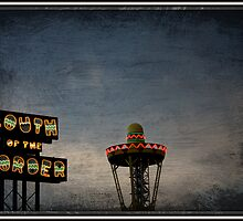 South of the Border by Brandonleo