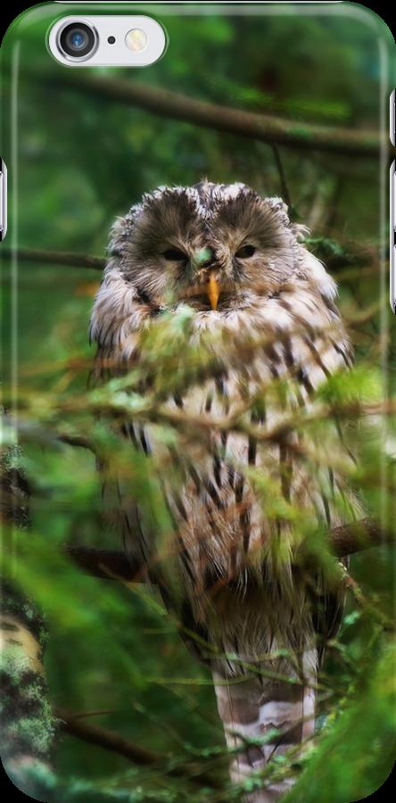 Ural Owl by SunDwn
