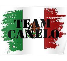 Team Canelo #2 Poster