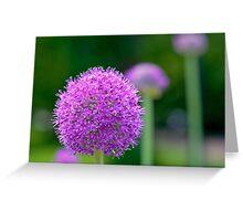 Perfect Purple Greeting Card