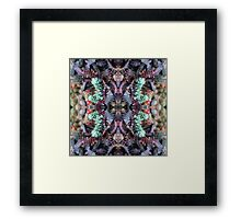 Ssuccuulentss - In the Mirror Framed Print