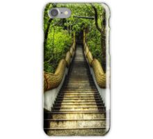 Dragon Steps iPhone Case/Skin
