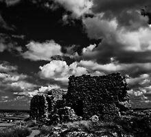 Rock of Dunamase by Iwona Kwiatkowska