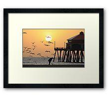 Sunset Over Seagulls Framed Print