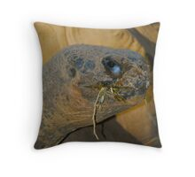 Tommy Tortoise Throw Pillow