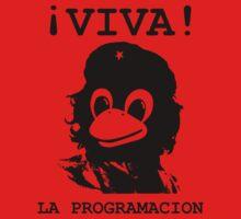 Viva programming by GeekandTek
