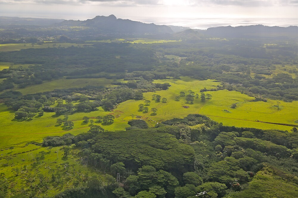 Continental Kauai, a view from the helicopter by brigant