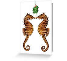 Seahorses Under The Mistletoe Greeting Card