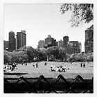 A day in Central Park by taylie27