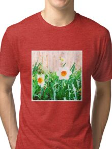 Painted Daffodils Tri-blend T-Shirt