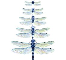 Dragonfly Tree by Tamara Clark
