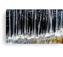 Ice Forest Canvas Print