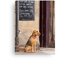 Waiting On Lunch Canvas Print