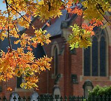 Autumn church by Robyn Selem