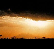 Africa (Digital Art Effect) by Jennifer Sumpton