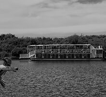 Southport's Paddle Steamer by Roger Green