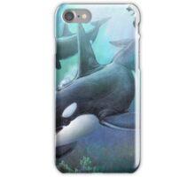 flight of the phoenix orcas iPhone Case/Skin