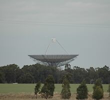 Parkes Radio Telescope 2006 by forgantly