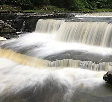 Aysgarth - Stepped Falls 1 of 3 by Harry Purves