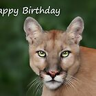 Enya - Birthday Card by Big Cat Rescue