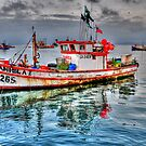 Boat at Coquimbo by Daidalos