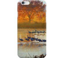 the cranes return iPhone Case/Skin