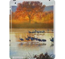 the cranes return iPad Case/Skin