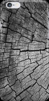 Cracked Wood by SunDwn